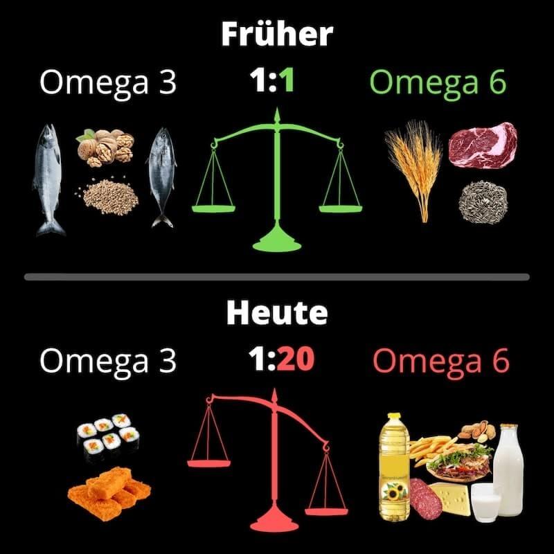 Omega 3 und Omega 6 früher und heute